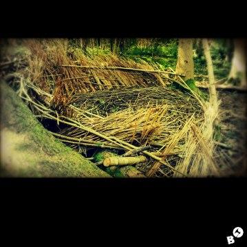 im Wald (Borre)